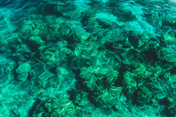 Clear and transparent emerald water surface. Paradise holidays