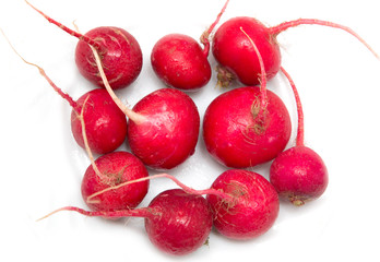 radishes on a white background