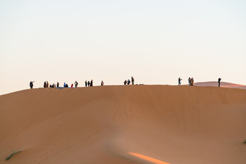 group of tourist  observer sand desert