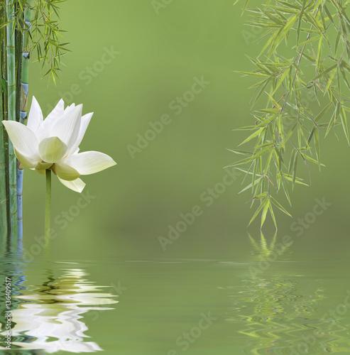 Composition Zen Aquatique Bambous Et Fleur De Lotus
