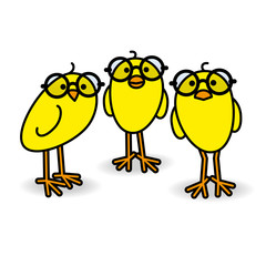 Three Yellow Chicks Wearing Black Round Glasses Staring