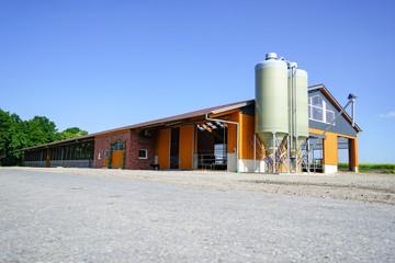 Landwirtschaft - neuer, moderner Milchviehstall im Sonnenschein