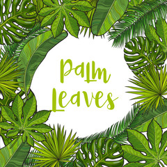 Banner frame of tropical palm leaves with round place for text, sketch vector illustration. Hand drawn realistic exotic, tropical palm leaves as round frame, banner, label design