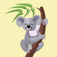 Grey koala bear isolated on wood branch with green leaves