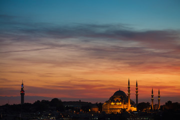 Suleymaniye Mosque and Beyazit Tower Istanbul