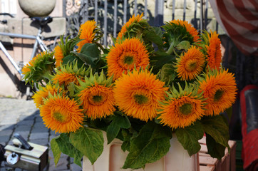 Beautiful yellow sunflowers bouquet in a vase on the street.