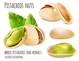 Pistachios vector illustration
