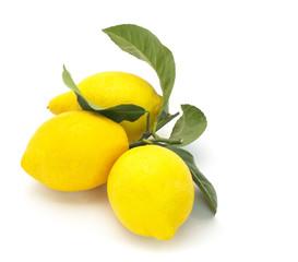 Three Fresh Lemons on a white background