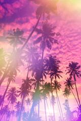 Tropical sunset retro stylized with film light leaks