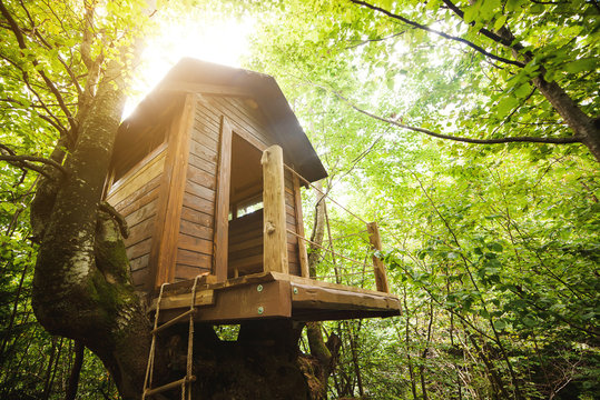 Tree house in the garden.