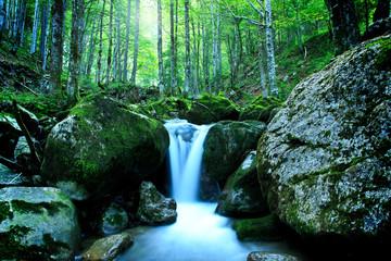 Gebirgsbach in der Wildnis - Langzeitbelichtung