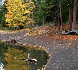 Fall reflections in Scout Lake