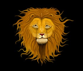 Majestic lion with long mane of curls on, on a black background