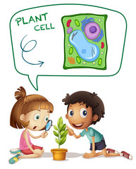 Children looking at plant cell on leaf
