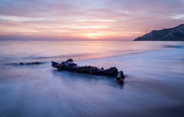 Long exposure of driftwood amazing sunset colors