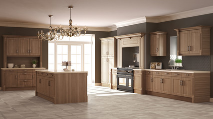 Classic kitchen, elegant interior design with wooden details