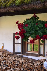 Farm Window above a Wood Stack, Slovenia