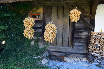 Corncob Bushels in front of a Wooden House, Slovenia