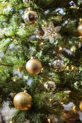 Close-up of golden baubles on Christmas tree