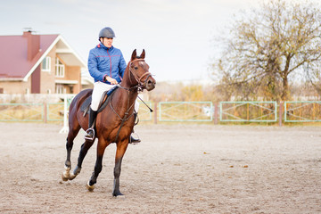 Young sportsman riding horse on equestrian training.