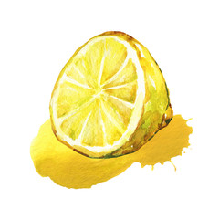 Half of lemon. Watercolor illustration isolated on white background
