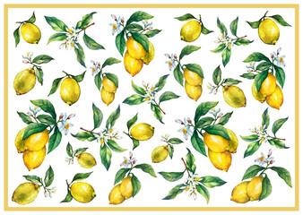 The background of the branches of fresh citrus fruit lemons with green leaves and flowers. Hand drawn watercolor painting on white background.