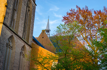 Old church in the dutch town Ede, Gelderland, Netherlands