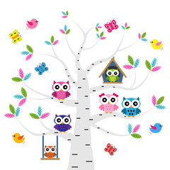 Vector set of a colorful owls at the birch tree