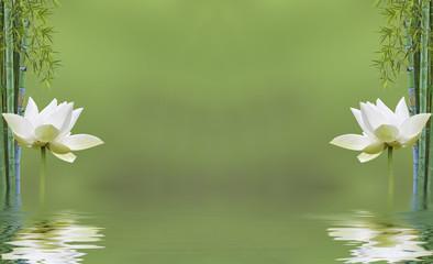 composition zen aquatique, bambou et fleur de lotus