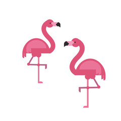 Two flamingoes vector illustration in flat style