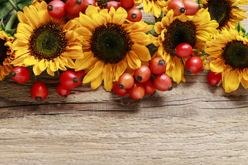 Wall Mural - Sunflowers and rosa canina twigs (rose hip) on wood