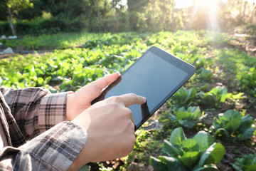 Farmer using digital tablet computer in cultivated agriculture F