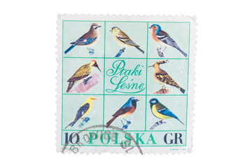 POLAND - CIRCA 1966: A stamp printed in  shows different k