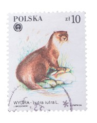 POLAND - CIRCA 1984: A Stamp printed in  shows image of