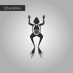 frog biology black and white style icon