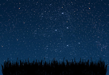 Wall Mural - background night sky with stars and moon