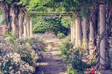 Romantic garden Wall mural