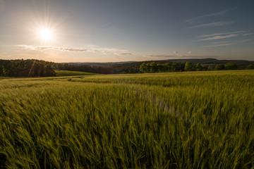 Sonnenuntergang in der Oberpfalz