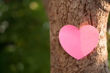 handmade heart paper on tree texture