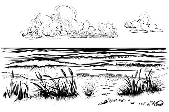 Ocean or sea beach with stormy waves, grass and cloud, sketch.