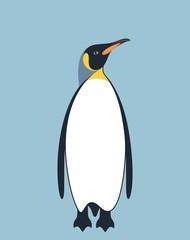 Penguin. King Penguin