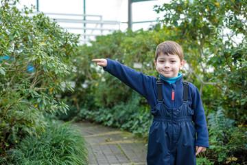 Fototapeta boy kid at the greenhouse with a lot of plants. azalea winter ga obraz