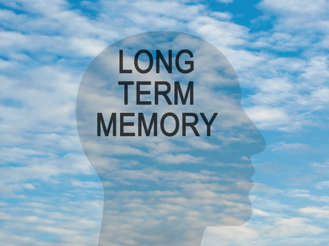 Words Long Term Memory On Transparent Head Silhouette Against A Blue Cloudy Sky, illustration
