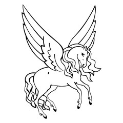 beautiful drawing of pegasus