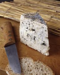 Fromage / Bleu d'Auvergne