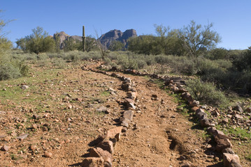 Remote desert trail