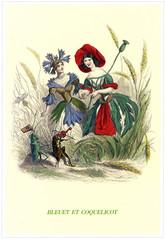 Illustration / Les fleurs animées de Grandville / Bleuet et coquelicot
