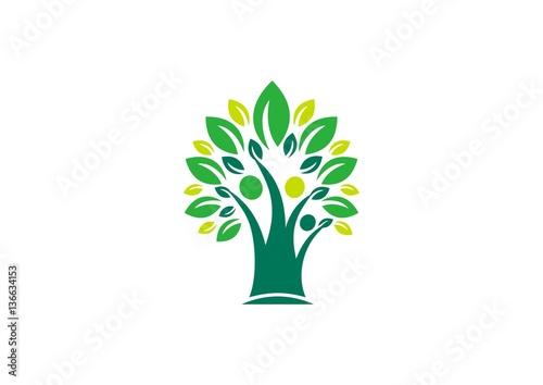 Family Tree Logo Parenting Wellness Kid Health Care Symbol