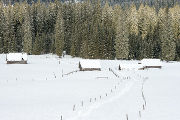 Alpine meadow during winter time in Slovenia