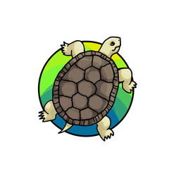 Tortoise. Animal art, cute cartoon style, vector hand drawn illustration. Suitable for pet shop or zoo ads, label design or animal food package element